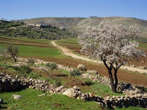 Valle cercano a Hebron